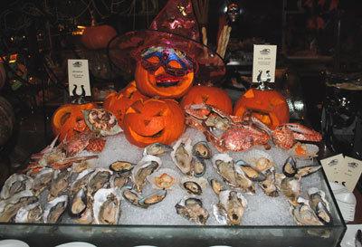 牡蛎反馈图片