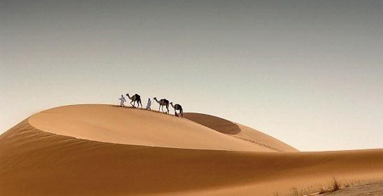 阿布扎比位于阿拉伯半岛的东北 部,波斯湾沿岸的一个三角形小岛上