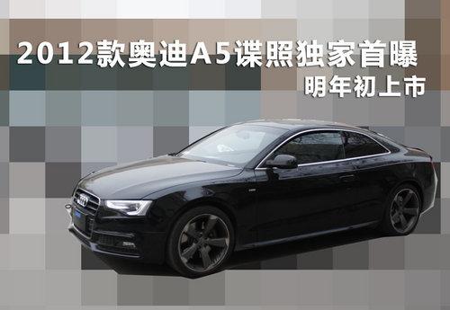 明年初正式曝光2012款奥迪A5谍照上市_喇叭黄海翱龙cuv怎么调汽车音量