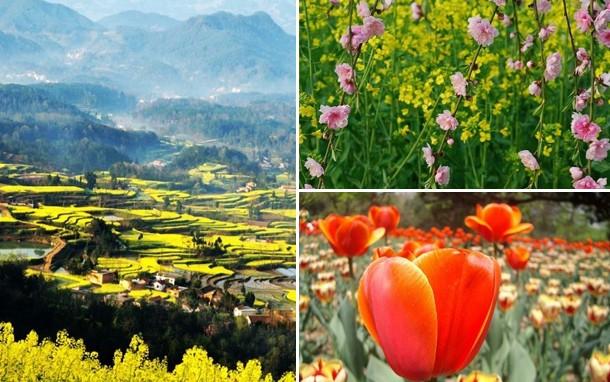 陕西最美的十大赏花地