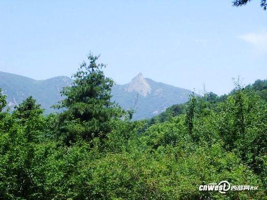 奇峰-心中的故乡歌谱