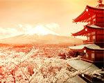 畅游西安最美的樱花
