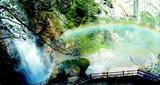 朱雀太平森林公园