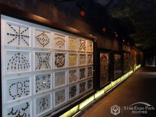 昆虫标本展示长廊,汇集昆虫的科普知识.(白晗摄)