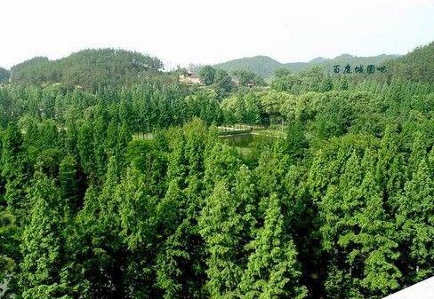汉中市城固县-南沙河风景名胜区