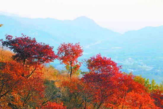 """秋季旅游,走进沂蒙山风景区,感受李杜笔下的""""醉眠秋共被""""."""