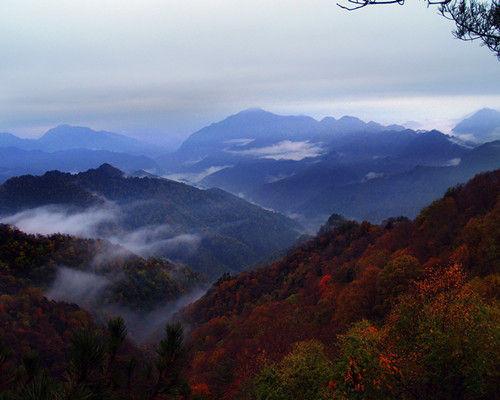 渭南 旅游 正文    黄柏塬风景区地处秦岭南麓腹地
