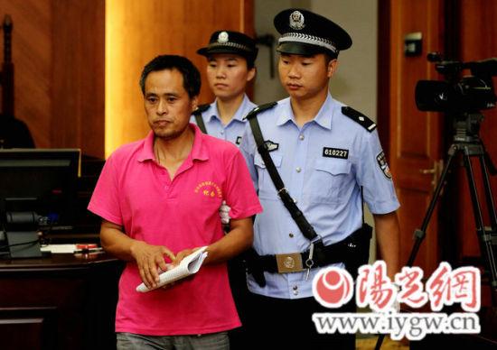 杨某出庭受审