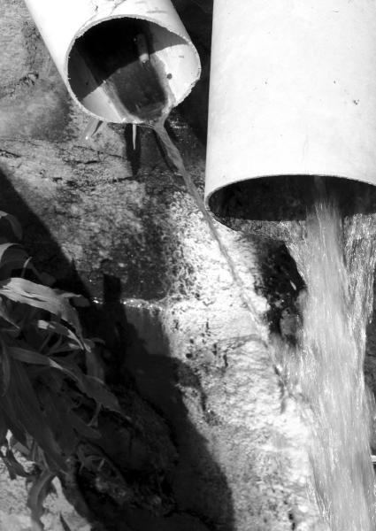 记者来到西安市黑河水源地环境保护管理
