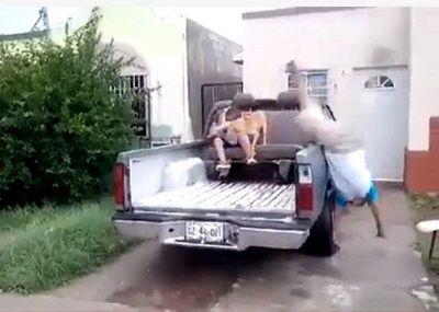男孩从车上摔下 倒地瞬间出手侧空翻(图)