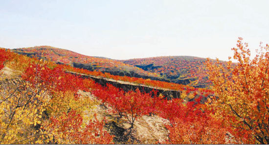 秋天风景笔触水粉