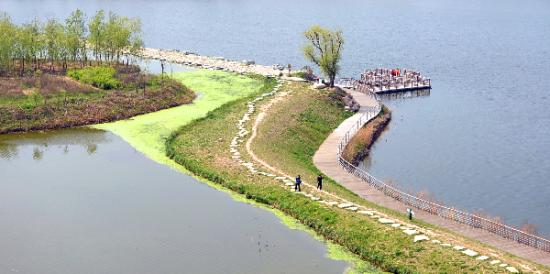 走在浐灞河两岸,水天一色,绿影婆娑,随处可见白鹭、绿翅鸭、鸬鹚、红脚鹬等水禽。据统计,浐灞生态区内鸟类种类数由2005年的62种增加到现在的205种。   聚焦丝路 产业腾飞增活力   优美的生态环境为浐灞生态区的产业发展注入活力。2015年3月发布的《推动共建丝绸之路经济带和21世纪海上丝绸之路的愿景与行动》,文中提出打造西安内陆型改革开放新高地。而西安丝绸之路经济带首批60个重点项目中的欧亚经济综合园区核心区、西安领事馆区,就设在浐灞生态区。
