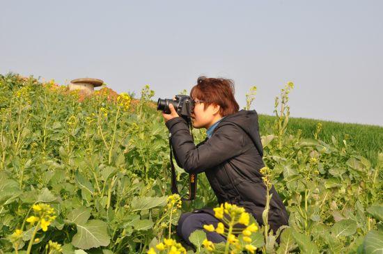 龙山上的油菜花已渐次开放,吸引游人前来观赏