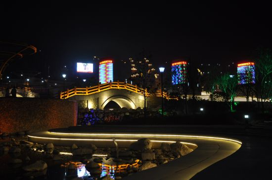 夜色中的朱鹮梨园门景区