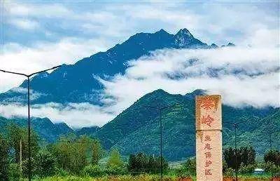 汉中市环保局认真学习贯彻《陕西省秦岭生态环境保护条例》