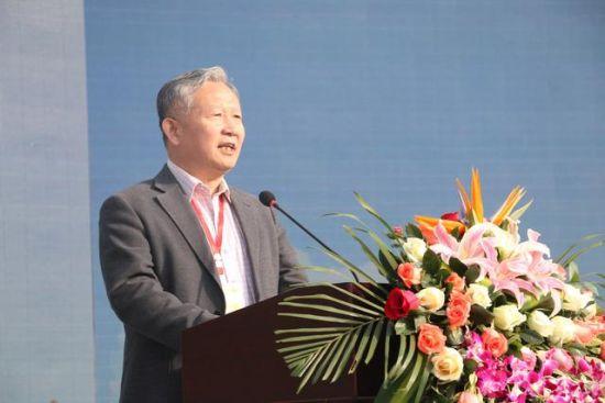 国际学生感知汉文化基地项目正式启动西北大学副校长王正斌发言