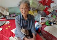 9旬老人老无所依与猫为伴