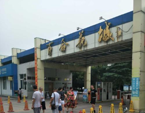 百合花城:业主连续多年享受分红
