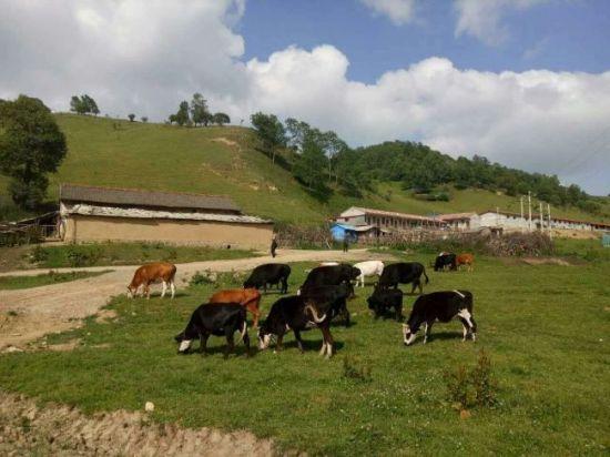 陇县全域旅游产业.扶贫见成效