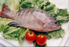 鱼类的食疗养生功效
