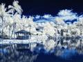 红外线辐射下的冰雪世界