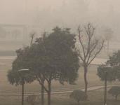 西安最近雾霭天气频繁