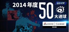 足坛2014年度50大进球